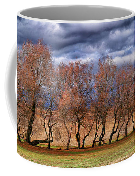 Ciudad Real Province Coffee Mug featuring the photograph Tarays Forest National Park In Tables by David Santiago Garcia