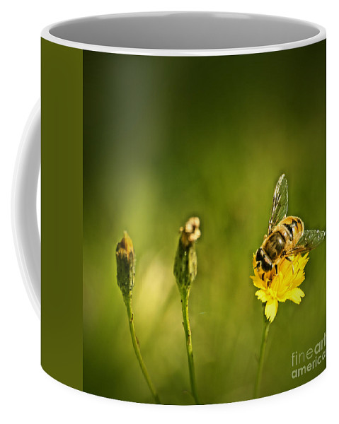 Bee Coffee Mug featuring the photograph Tasting So Good by Aimelle