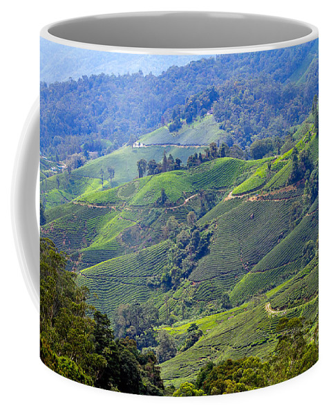 Travel Coffee Mug featuring the photograph Tea Plantation In The Cameron Highlands Malaysia by Louise Heusinkveld