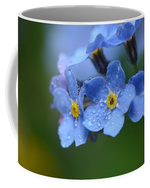Forget Me Not Coffee Mug featuring the photograph Tearful Goodbye by Lisa Knechtel