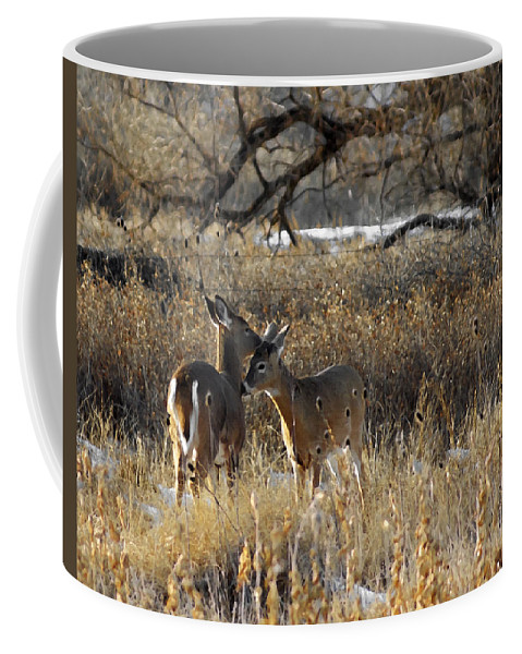 Animals Coffee Mug featuring the digital art Tender Moment by Ernie Echols