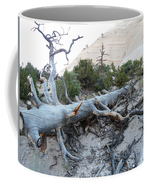 Tent Rocks Coffee Mug featuring the photograph Tent Rocks 10 by Lovina Wright