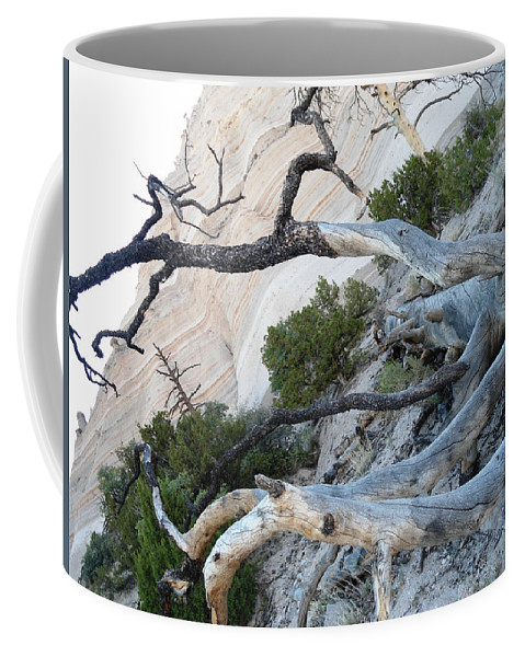 Tent Rocks Coffee Mug featuring the photograph Tent Rocks 12 by Lovina Wright