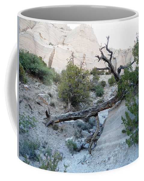 Tent Rocks Coffee Mug featuring the photograph Tent Rocks 9 by Lovina Wright