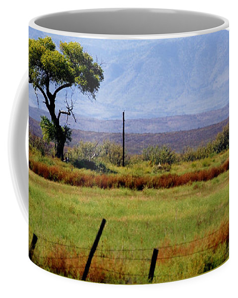 Texas Coffee Mug featuring the photograph Texas Landscape 16095 by Jerry Sodorff