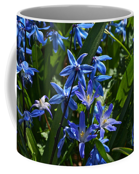 Scilla And Chionodoxa Flowers Coffee Mug featuring the photograph Thank You by Byron Varvarigos
