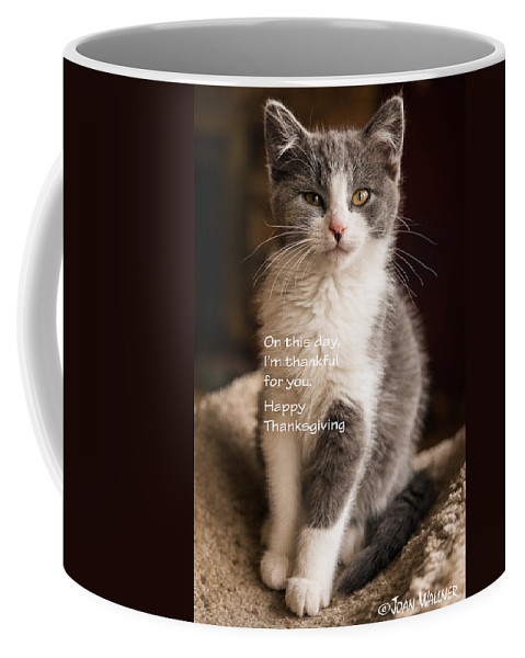 Katmai Kitty Coffee Mug featuring the photograph Thanksgiving Kitty by Joan Wallner
