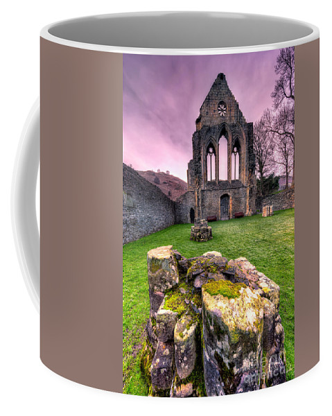 Valle Crucis Coffee Mug featuring the photograph The Abbey by Adrian Evans