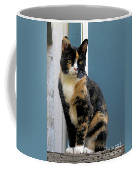 Cat Coffee Mug featuring the photograph The Art Of Watching by Rory Sagner