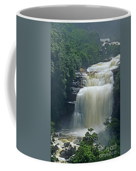 Venezuela Coffee Mug featuring the photograph The Base Of Angel Falls In Canaima National Park Venezuela by Dave Welling