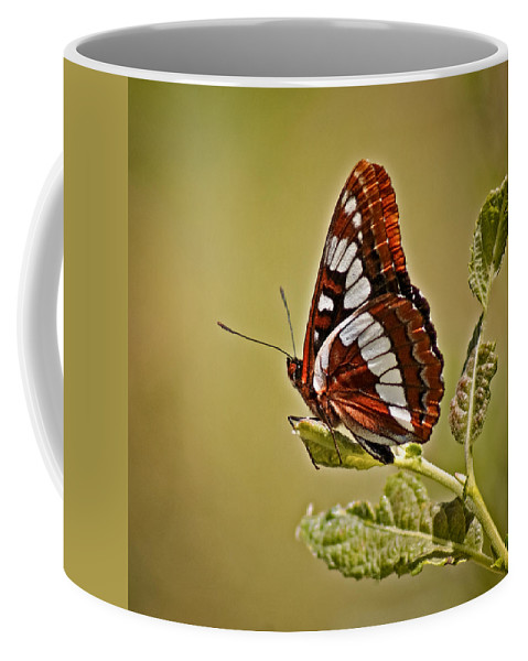 Bugs Coffee Mug featuring the photograph The Butterfly by Ernie Echols