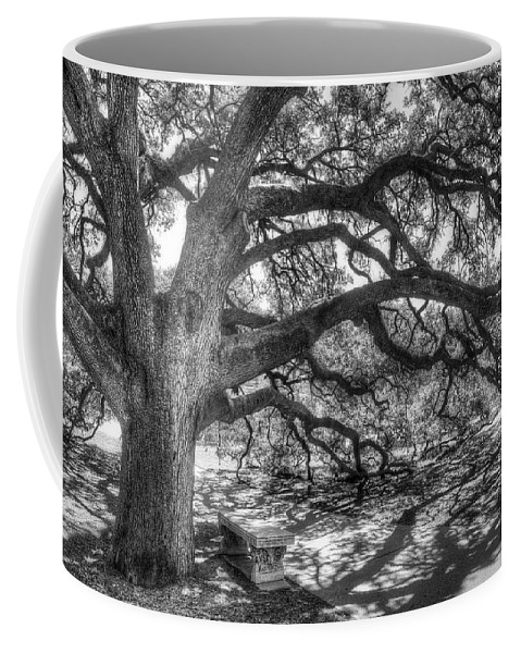 Tree Coffee Mug featuring the photograph The Century Oak by Scott Norris
