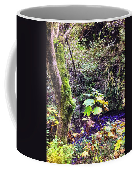 Multnomah Scenic Route Coffee Mug featuring the photograph The Creek by Image Takers Photography LLC - Laura Morgan