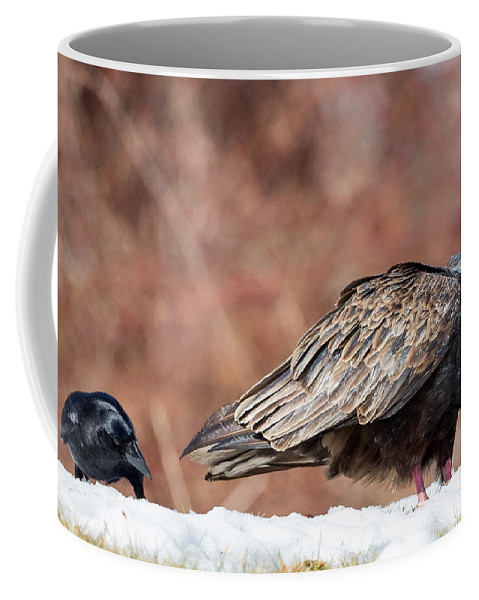 Vulture Coffee Mug featuring the photograph The Crow And Vulture by Bill Wakeley