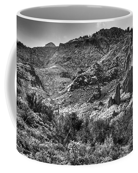 Landscape Coffee Mug featuring the photograph The Desert Sparkles by Phyllis Denton