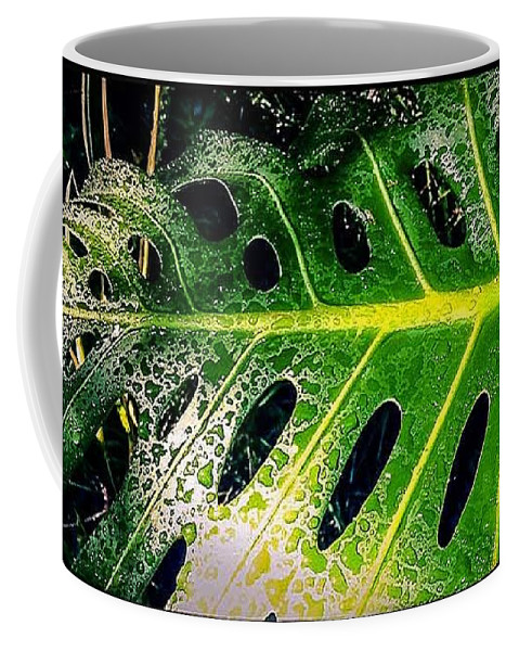 Plants Coffee Mug featuring the photograph The Dews by Fei A
