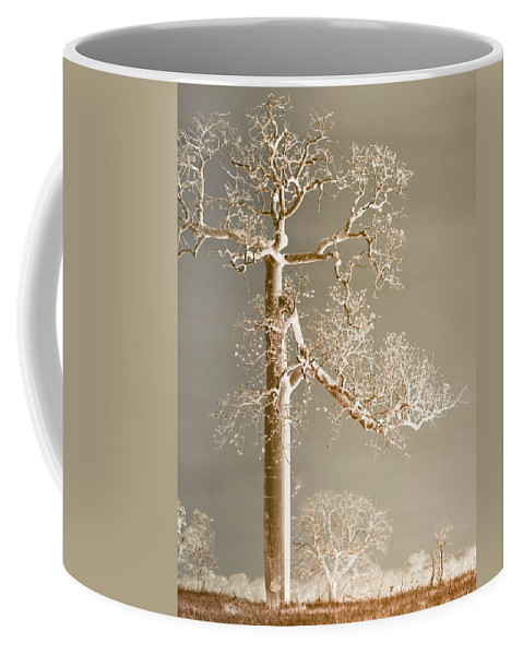 Landscapes Coffee Mug featuring the photograph The Dreaming Tree by Holly Kempe