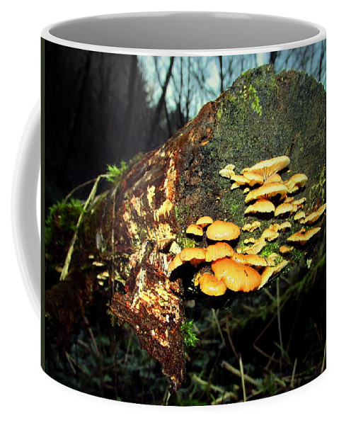 Mushroom Coffee Mug featuring the photograph The End Is Just The Beginning by Joyce Dickens