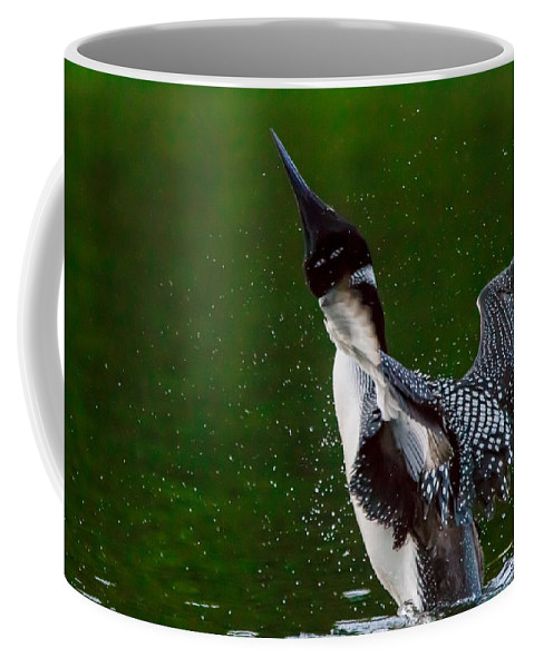 Float Coffee Mug featuring the photograph The Ever Elusive Loon Coming Out Of Dive by Eti Reid