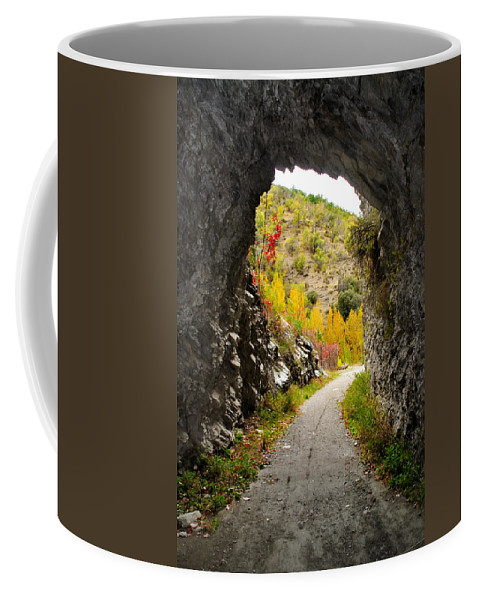 Cave Coffee Mug featuring the photograph The Fall Cave by Guido Montanes Castillo