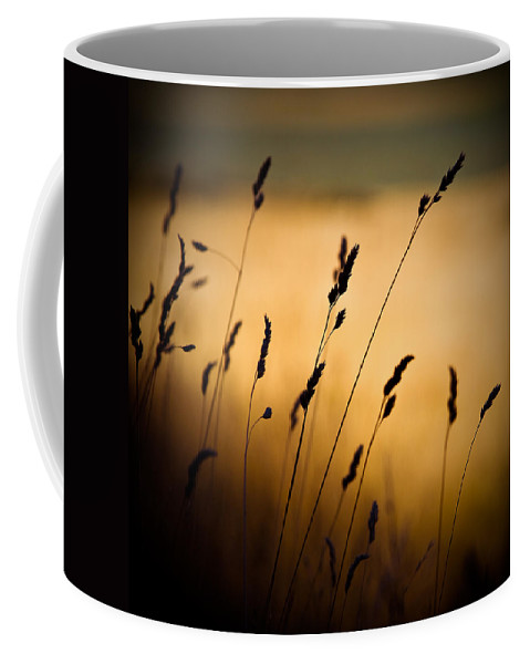 Filed At Sunset Coffee Mug featuring the photograph The Field by Dave Bowman