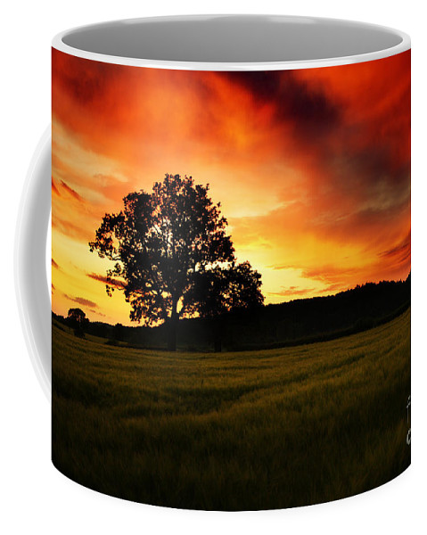 Sunset Coffee Mug featuring the photograph the Fire on the Sky by Angel Tarantella