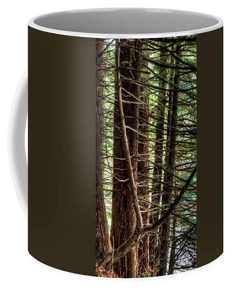 Forest Coffee Mug featuring the photograph The Forest Combed By The Wind In The Lake by Weston Westmoreland