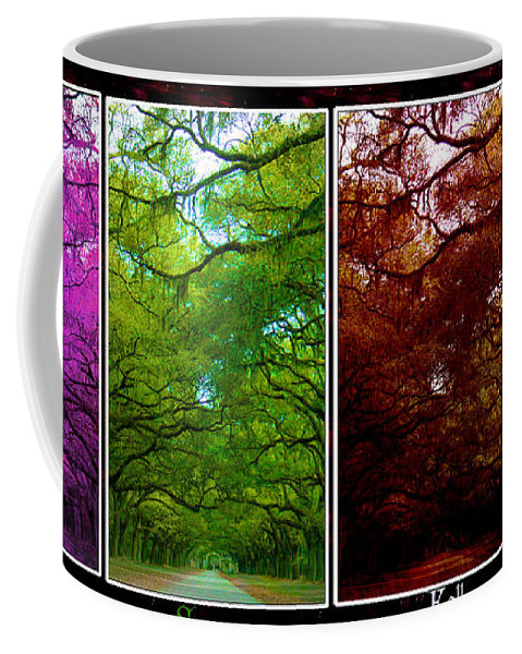 Wormsloe Coffee Mug featuring the photograph The Four Seasons- Featured In Comfortable Art And Newbies Groups by Ericamaxine Price
