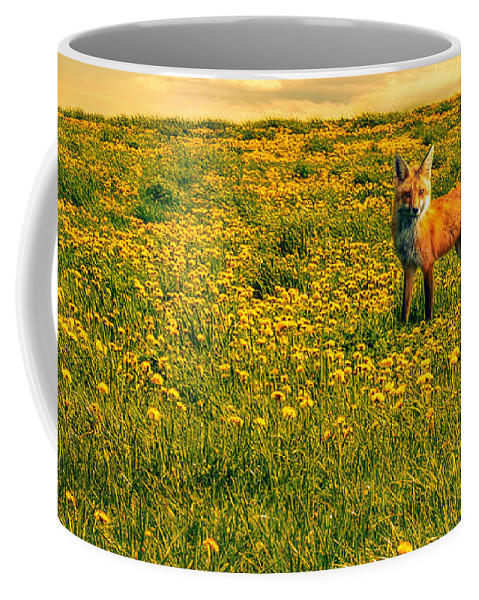 Cows Coffee Mug featuring the photograph The Fox And The Cow by Bob Orsillo