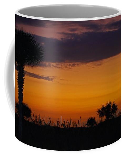Gold Coast Coffee Mug featuring the photograph The Gold Coast by Skip Willits