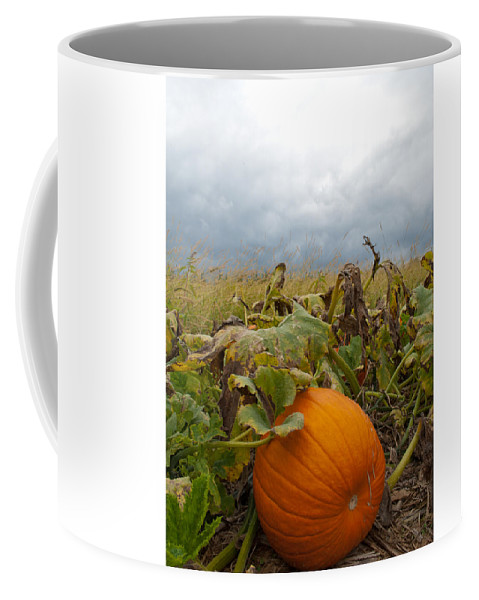 Pumpkin Coffee Mug featuring the photograph The Great Pumpkin by Wayne King