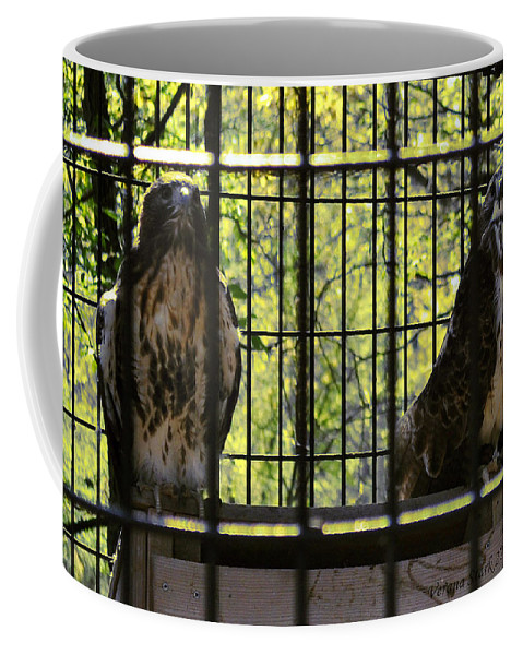 Hawks Coffee Mug featuring the photograph The Hawks From The Series The Imprint Of Man In Nature by Verana Stark