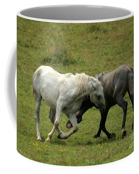 Grey Horse Coffee Mug featuring the photograph The Horse Ballet by Angel Tarantella