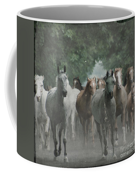 Arabian Coffee Mug featuring the photograph The Horsechestnut Tree Avenue by Angel Ciesniarska