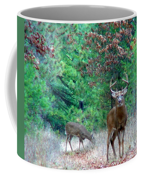 Whitetail Coffee Mug featuring the photograph The King by Thomas Young