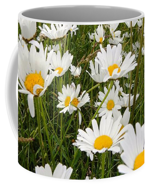 Nature Coffee Mug featuring the photograph The Land Of White Daisies by Loreta Mickiene