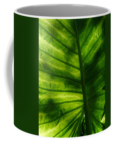 Atlantic Ocean Coffee Mug featuring the photograph The Leaf by Jouko Lehto
