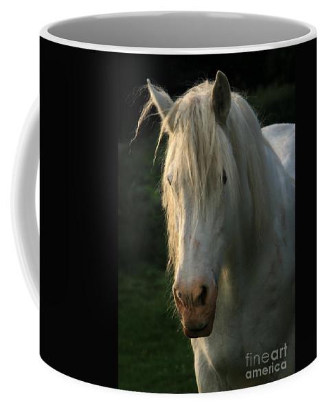 Unicorn Coffee Mug featuring the photograph The Light In The Mane by Angel Ciesniarska