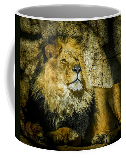 Lion Coffee Mug featuring the photograph The Lion by Ernie Echols