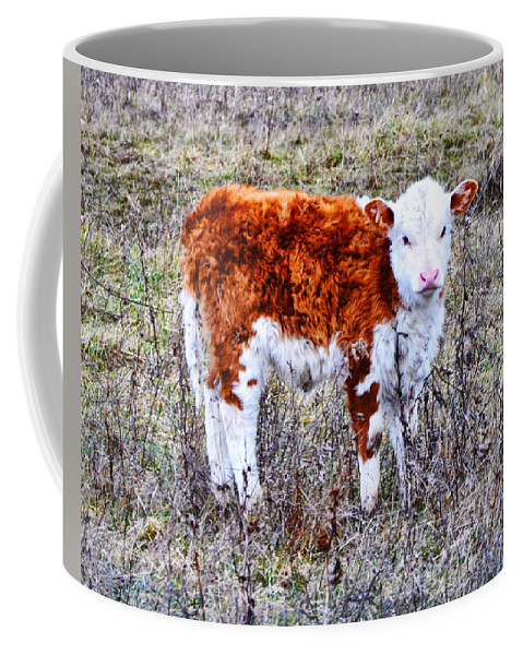 The Little Cow Coffee Mug featuring the photograph The Little Cow by Bill Cannon