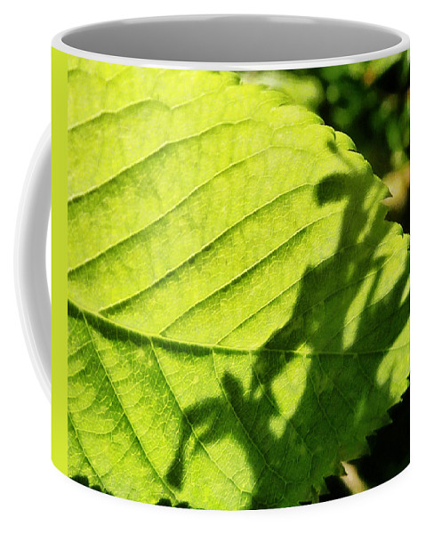 Green Coffee Mug featuring the photograph The Little Green Dragon by Steve Taylor