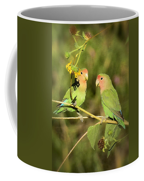 Lovebirds Coffee Mug featuring the photograph The Lovebirds by Saija Lehtonen