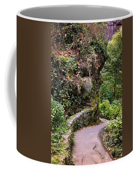 Oregon Coffee Mug featuring the photograph The Narrow Path by Image Takers Photography LLC - Laura Morgan