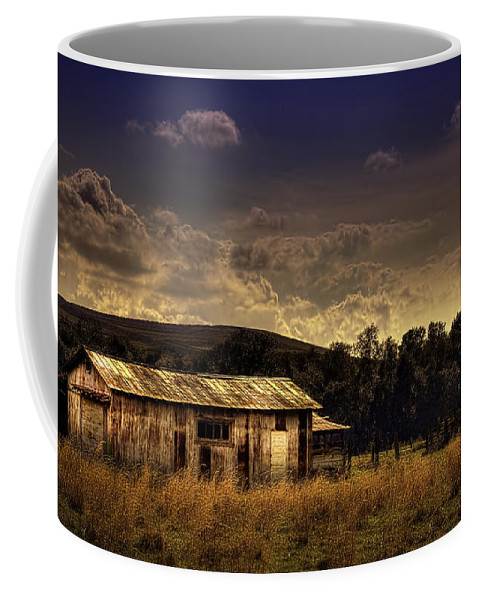 Barns Coffee Mug featuring the photograph The Old Barn by Marvin Spates