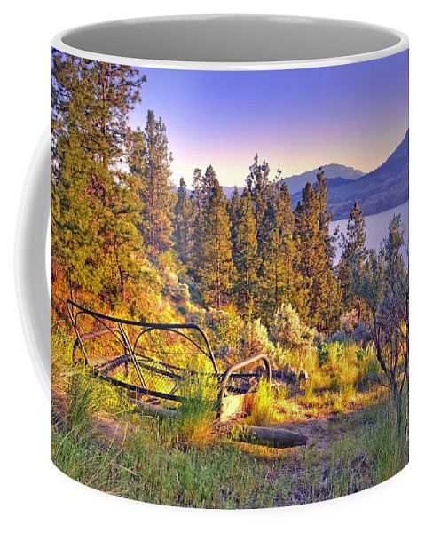 Frame Coffee Mug featuring the photograph The Old Resting Place by Tara Turner