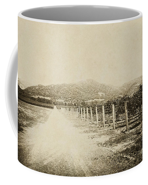 Road; Dirt; Gravel; Mountains; Landscape; Rows; Wood; Grapes; Italy; Napa; California; Region; Sepia; Old; Vintage; Wine Coffee Mug featuring the photograph The Old Road by Margie Hurwich