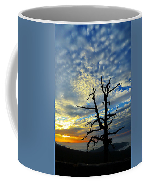 Metro Coffee Mug featuring the photograph The Old Tree by Metro DC Photography