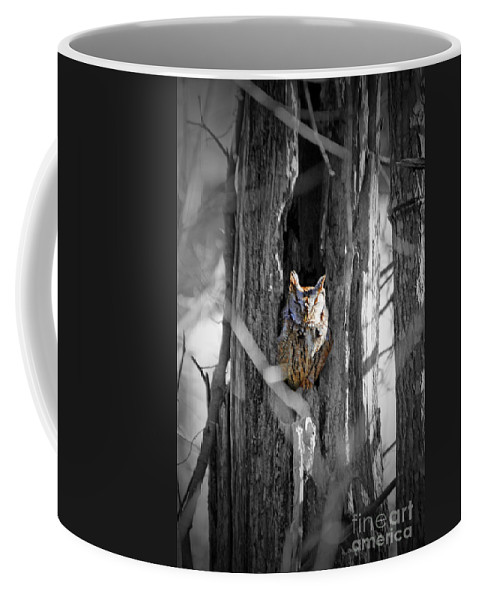 Owl Coffee Mug featuring the photograph The Owl by Jost Houk