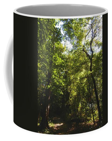 Path Coffee Mug featuring the photograph The Path Ahead by Dan McCafferty