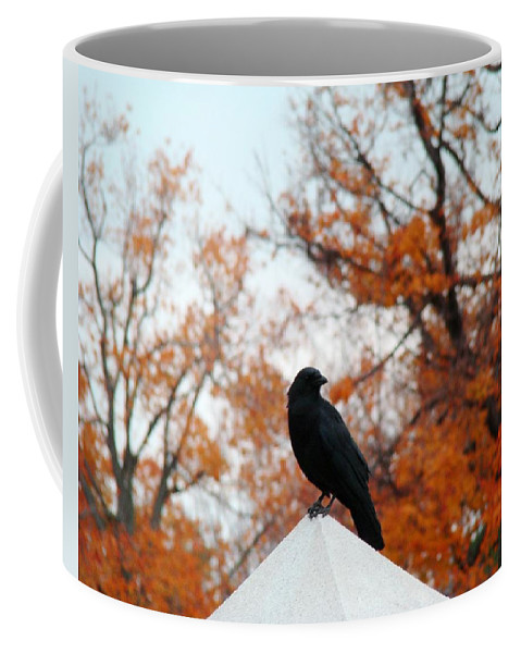 Blackbird Coffee Mug featuring the photograph Crow Found The Perfect Pyramid Point by Gothicrow Images